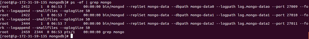 Mongo_Replica_Set_Processes_4